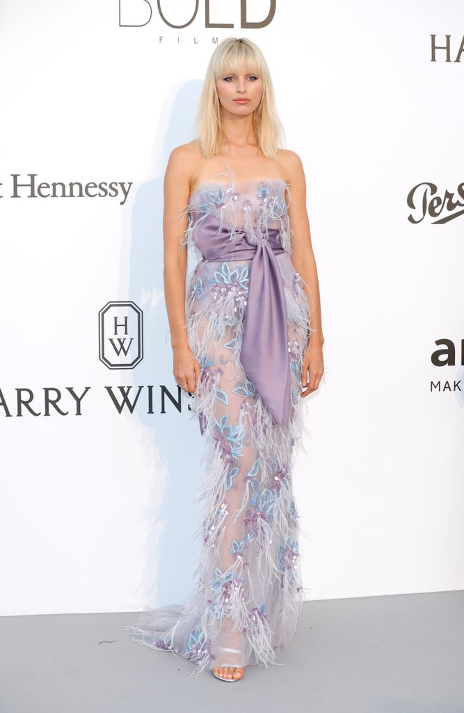Karolina Kurkova in Marchesa at the amfAR Gala, Cannes 2017.